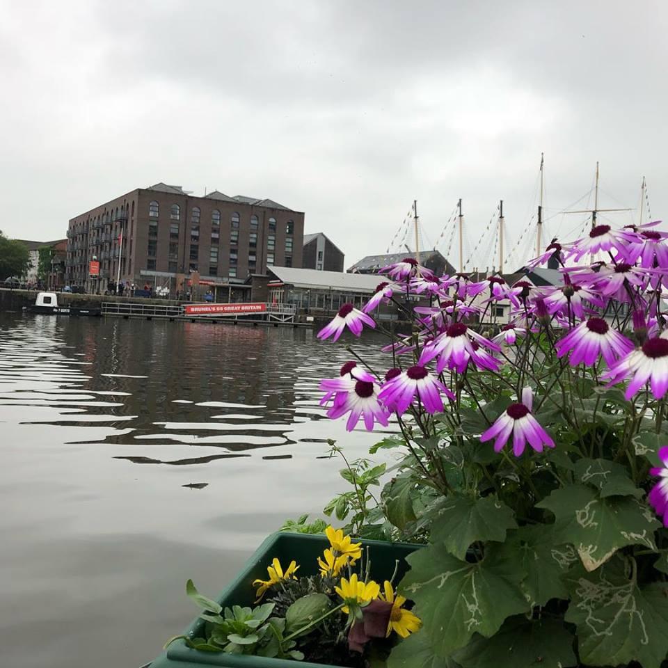 flowersbristolharbour